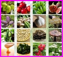 毎日酵素 原材料