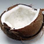 スマスマでローラ愛用のココナッツオイルのメーカーはどこの?