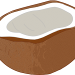 ココナッツオイル テレビで紹介2016はどれ?4週間で-7.1kgも!